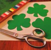 Цветочный символ ирландии. Символы ирландии
