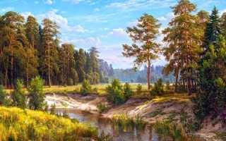 Пейзажи природы картины. Картины маслом