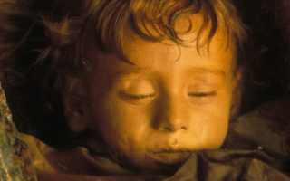 Спящая красавица розалия. Розалия ломбардо