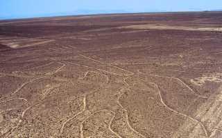 Рисунки наска координаты. Линии пустыни наска