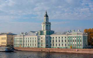 Музей кунсткамера история. История кунсткамеры