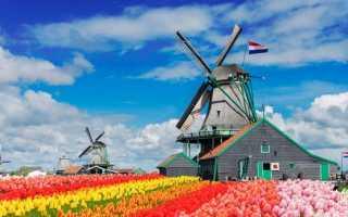 Культурная дипломатия. Культура и традиции голландии