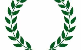 Лавровый лист символ чего. «Лавровый венок» в книгах