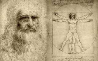 Пропорции да винчи. «Леонардо да Винчи