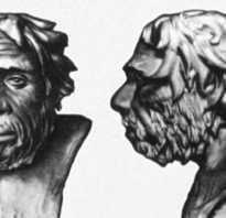 Народы урала. История и культура урала