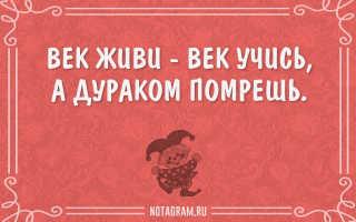 Русские народные пословицы.
