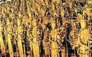 Золотой храм краткое. Жизнь и смерть Юкио Мисимы