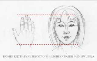 Кисти рук в разных ракурсах. Рисование рук