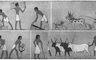Как жили земледельцы и ремесленники в египте.