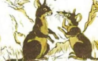 Русские сказки на китайском. Сказки о животных