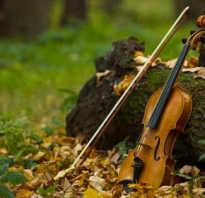 Скрипка, история происхождения, ноты.