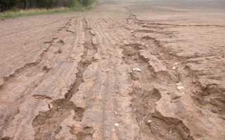 Эрозия уничтожает. Эрозия почвы