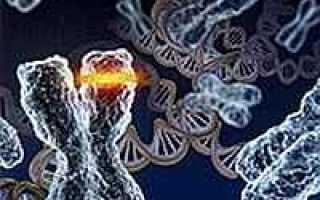 Неизвестные болезни. Новый ужас XXI века