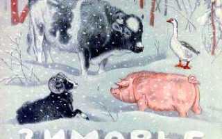 Сказка зимовье зверей иллюстрации. Зимовье зверей