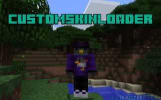 Мод на скины в майнкрафт 1.12. Скины для Minecraft